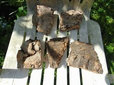 Cork bark 5 Pieces Perfect for an Orchid Mount or Parrot chew