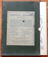 BIOLOGICAL DRAWINGS by C. von WYSS-14 mixed DRAWINGS FROM 1st & 2ND series-.1950