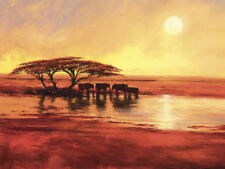 Jonathan Sanders Canvas Art Print 30 Different Africa Landscape & Beach Pictures