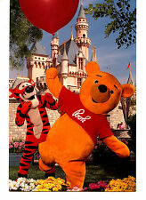 Tigger-Winnie the Pooh Character-Castle-Disneyla nd Amusement Park Postcard