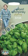 Mr Fothergills - Herb - David Domoney Basil Sweet - 650 Seeds