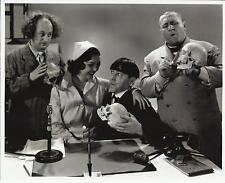 The Three Stooges Larry Curly and Moe Looking at Skulls 8 x 10 Photo