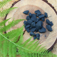 Regular Type III Shungite Stones Set Shungite Powder Grounding Healing Stone