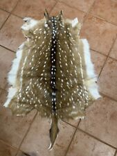 Beautiful Axis Deer Hide