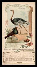 CPA chocolaterie AIGUEBELLE-le monde des oiseaux-ECHASSIERS 5