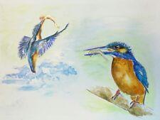 *KINGFISHERS*  Original Ink/Watercolour Painting artist Ray Statter A4 Bird Art