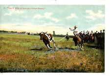 Tom N Wills Great Arizona Roper-Cowboy in Action-Western Vintage Postcard
