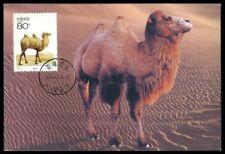 CHINA MK 2001 FAUNA KAMEL CAMEL MAXIMUMKARTE CARTE MAXIMUM CARD MC CM dq82