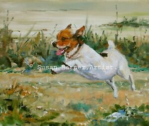 SALE Jack Russell Terrier Signed Dog Print by Susan Harper Unmounted
