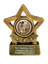 Horse Head and Shoe Star Trophy 8 cm Award ENGRAVED FREE