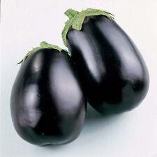 MELANZANA BLACK BEAUTY 40 SEMI Bellezza Nera Globo Rotonda Polpa Morbida