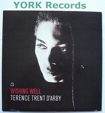 """TERENCE TRENT D'ARBY - Wishing Well - Excellent Condition 7"""" Single CBS TRENT 2"""