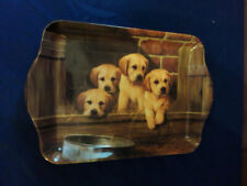 Vintage Guide Dogs Scatter Tray Labrador Puppies Keep your Keys &  Change Tidy
