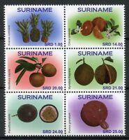 Suriname 2018 MNH Fruit Fruits Oranges Sapodilla 6v Block Plants Nature Stamps