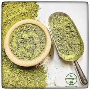 MATCHA TÈ VERDE Bio in Polvere Giapponese 100g the tea green tea