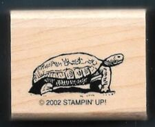 TORTOISE Turtle Wildlife Reptile Life Stampin' Up! Desert Friends RUBBER STAMP