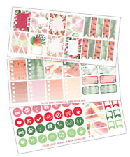 Watermelon Planner Stickers, 3 sheets, The happy planner