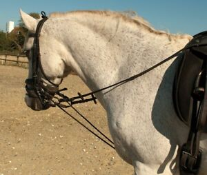 FULLY ELASTICATED TRAINING REINS,  brown
