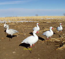 Avery Greenhead Gear Ghg Pro Grade Full Body Snow Goose Active Decoys 6 New!