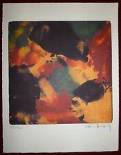 Alain Jacquet Lithographie originale signée art abstrait abstraction