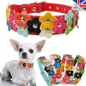 Floral Adjustable Leather Kitten Puppy Collars Small Pet Dog Cat Party Necklaces