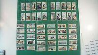 Sammelbilder Zigarettenbilder 50/50 Will´s Maritime Motive Alb-588