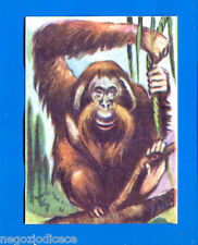ANIMALI - Lampo 1964 - Figurina-Sticker n. 46 - ORANGO -New