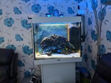 Juwel Marine Tank Full Set Up with 7 fish 1 cleaner shrimp.All included