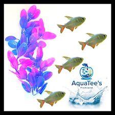 AQUARIUM FISH TANK PLANT DECORATION 15CM NANO POND AQUA ARTIFICIAL FRESH WATER