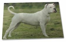American Staffordshire Bull Terrier Dog Extra Large Toughened Glass, AD-SBT9GCBL