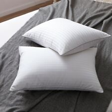 Set of 2 White Goose Down and Feather Bed Pillows1000Tc 100% Egyptian Cotton