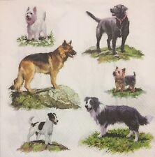 2 single paper napkins for Decoupage Servietten Dogs Doggy Puppy Hündchen Hund