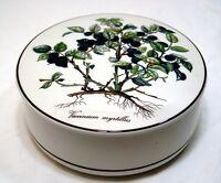 Villeroy & Boch Botanica Decoración Blueberry Caja Diámetro 15CM