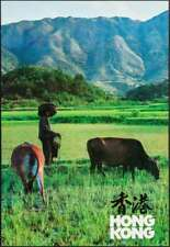 HONG KONG Rice farmer Vintage 1984 Travel Tourism poster 22x32