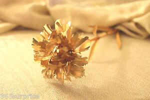 Best Mother's Day Gift Set: 24K Gold Carnation, Pearl Necklace, Pashmina