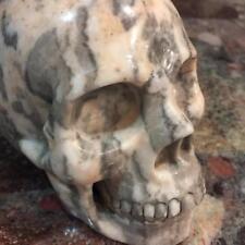 "5.4"" Natural Zebra Jasper Carved Crystal Skull Realistic Healing Skeleton  #4015"