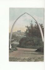 Postcard. Whalebone Arch in Park, Dover. 1905
