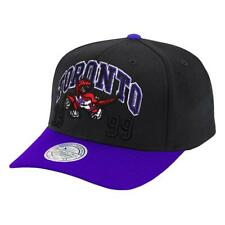 Toronto Raptors Mitchell & Ness NBA Team Spirit 110 Curve Snapback Hat - Black