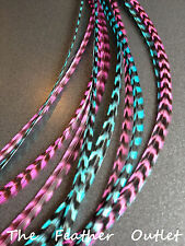 Lot 10 Turquoise blue Grizzly Feathers Hair Extensions Long Real TURQ PINK GRIZ