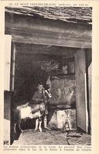 MONT GERBIER DES JONCS 210 source authentique de la loire chèvre