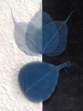 25 Navy Blue leaves Po Bo Banyan Skeleton leaf see through veins crafts cards