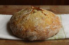 Cumbria sauvage levure sourdough starter organique + instruction et pancake recette!