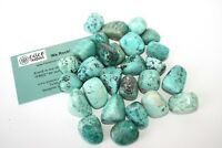 Turquoise Chrysocolla Tumbled Stone 25mm Qty 1 Healing Crystal Speaking Reiki