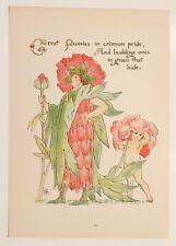 ANTIQUE WALTER CRANE Artist Bookplate 20 Floras Feast Great Peonies c1890 London