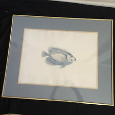 """Emperor Angelfish Painting 31"""" x 25"""" Frame w/ 23"""" x 17"""" Painting"""