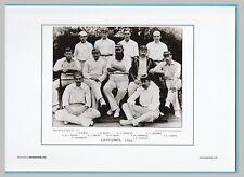 New listing CRICKET  -  UNMOUNTED CRICKET TEAM PRINT - GENTLEMEN - 1894