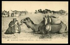 EGYPT Bedouin and Camels early LL PPC drinking through reed