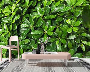 3D Green Plant Leaf Living Room Wall Murals Sticker Sofa Background Wallpaper