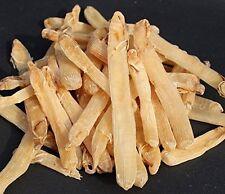 Precious dried seafood Sipunculus nudus 1 Pound  (454 gram) sandworm from Nanhai