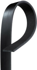 ACDelco 8K644 Serpentine Belt